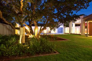 Spike Lights on Water Feature LED SA outdoor living LED-Uplighting