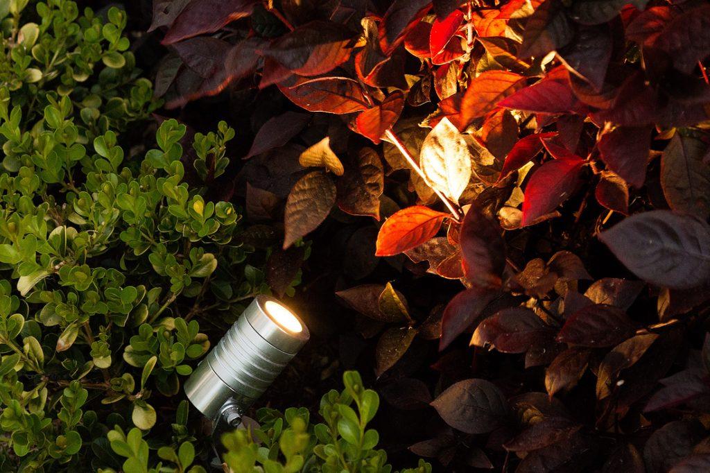 LUX 6W Spike Light
