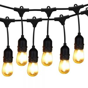 FESTOON LIGHTING, Commercial Grade, Very Bright, Low Voltage LEDs